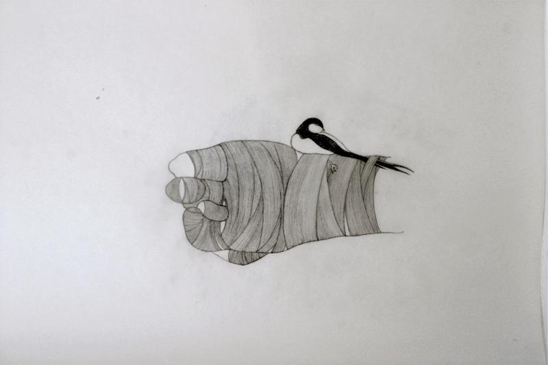Vendados, dibujo, grafito sobre papel vegetal. 2013