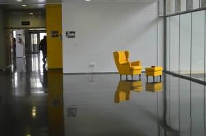 cura-amarillo